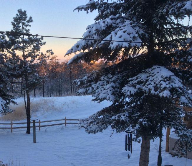 snowinCOS